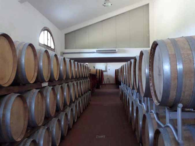 Oak barrels used for aging the wine properly